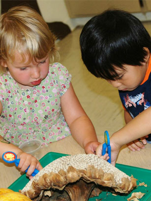 Montrose Preschool and Infant Care for early childhood education